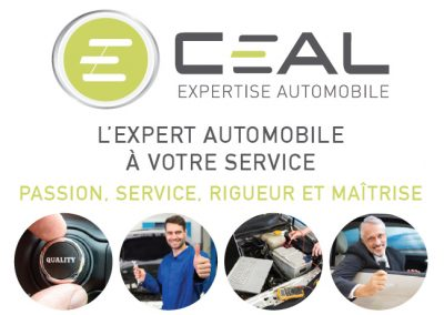 Cabinet Expertise Auto
